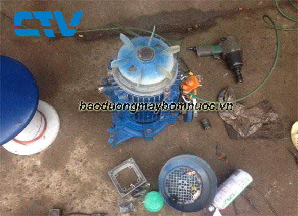 Dịch vụ bảo dưỡng máy bơm nước Leo cho các khách hàng tại Miền Bắc